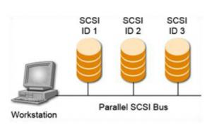 Parallel SCSI Bus